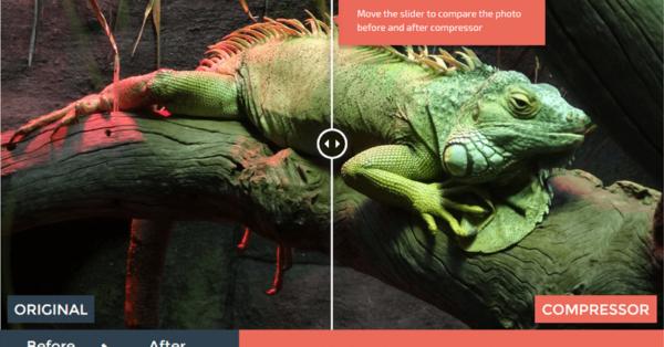 画質を落とさず画像のファイルサイズを最大90%軽くする方法