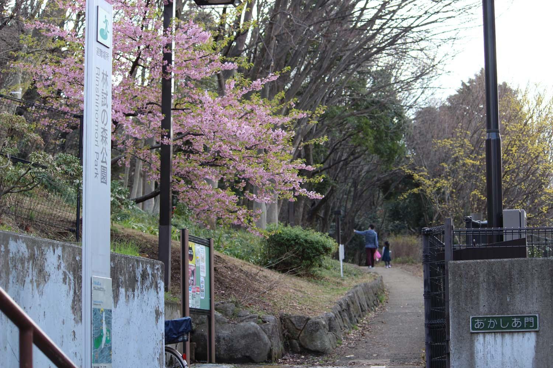林試の森公園入口