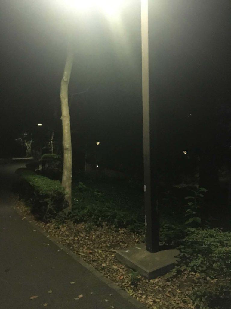 外灯あるところ